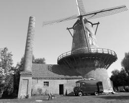 Belgisch 'Lentefeestje'